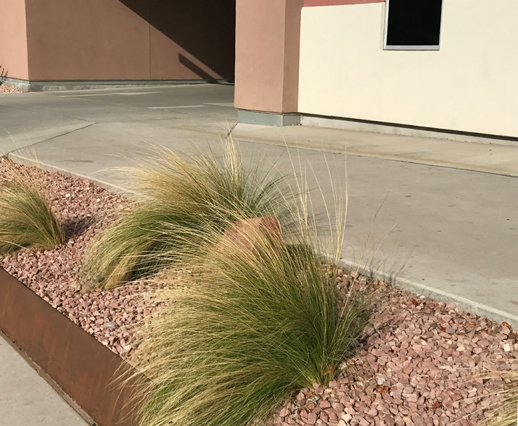 hotel front grasses