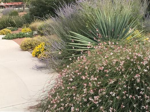 web floral sidewalk